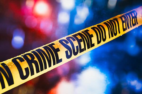 <h3>Crime Scene Detectives</h3>